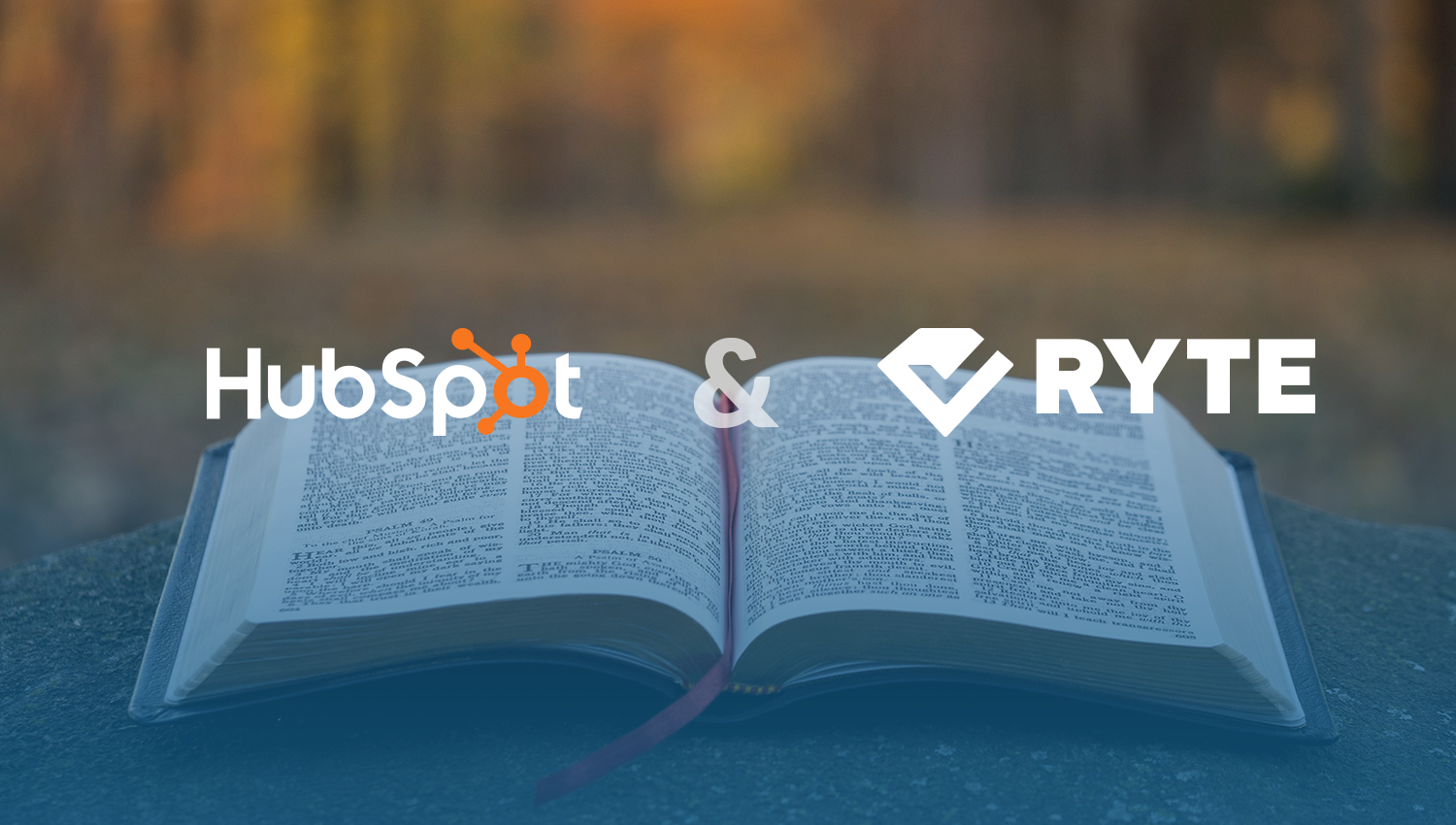 SEO-Audit-Ryte-Hubspsot-Ebook
