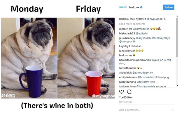 Barkbox-meme content marketing ideas Content Marketing